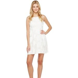 Tahari Size 10 White Asl Floral Lace Fit & Flare